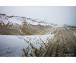 Herring Cove Blizzard