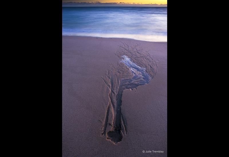 Sand Impression
