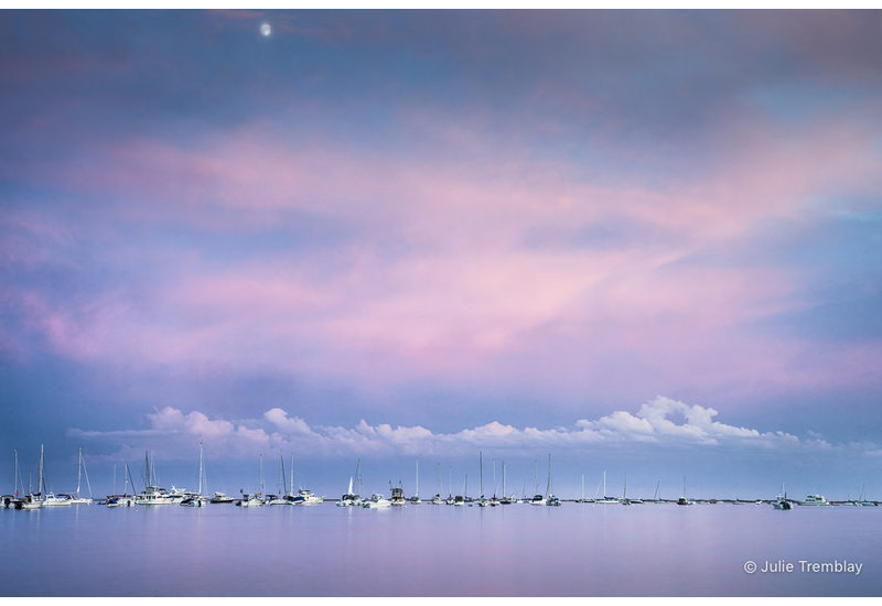 Cotton Candy Harbor