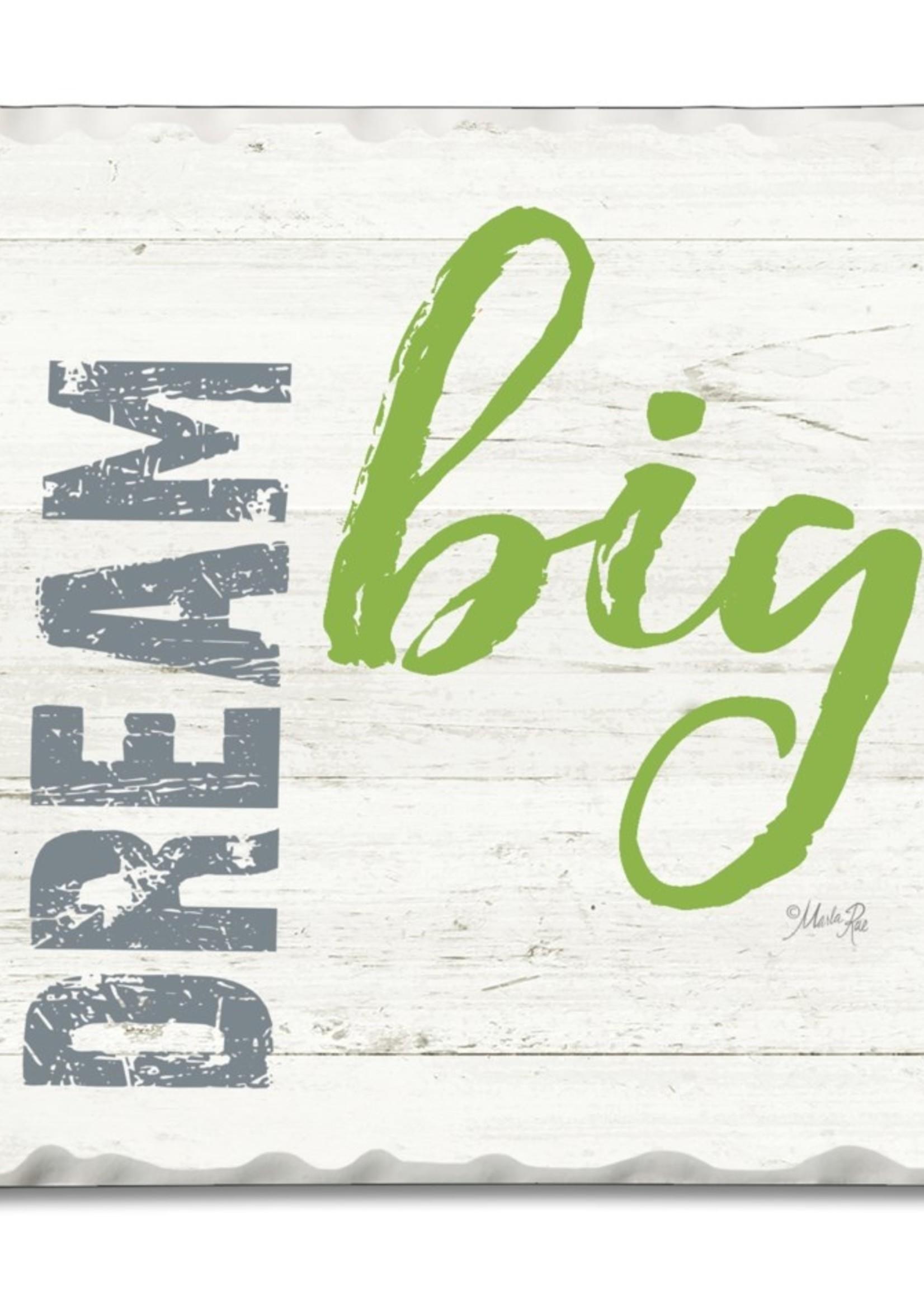 Coaster Single - Dream Big