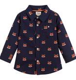 Hatley hatley baby button down shirt