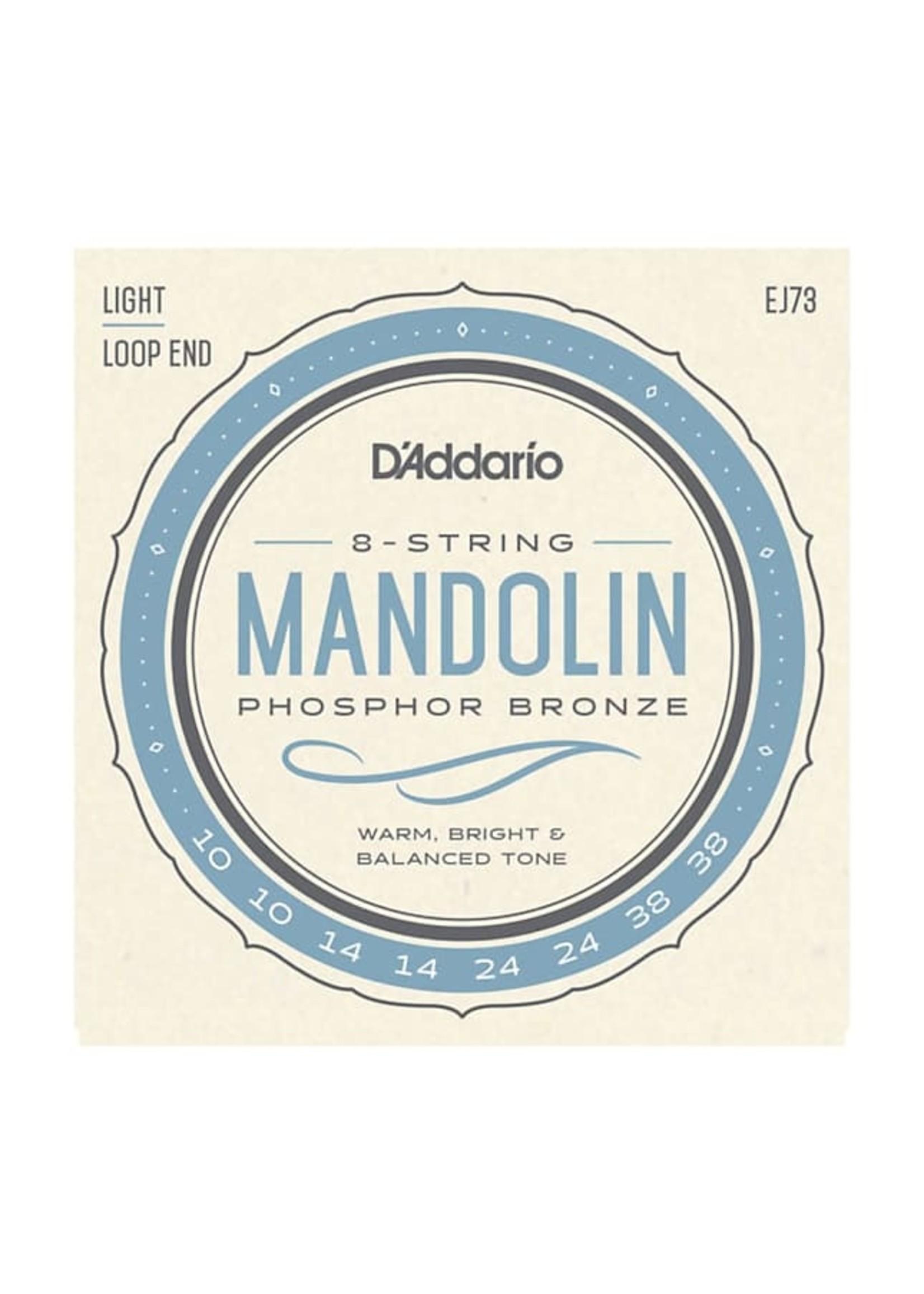 D'Addario D'Addario EJ73 Mandolin, Phosphor Bronze, Light, 10-38