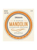 D'Addario D'Addario EJ74 Mandolin, Phosphor Bronze, Medium, 11-40