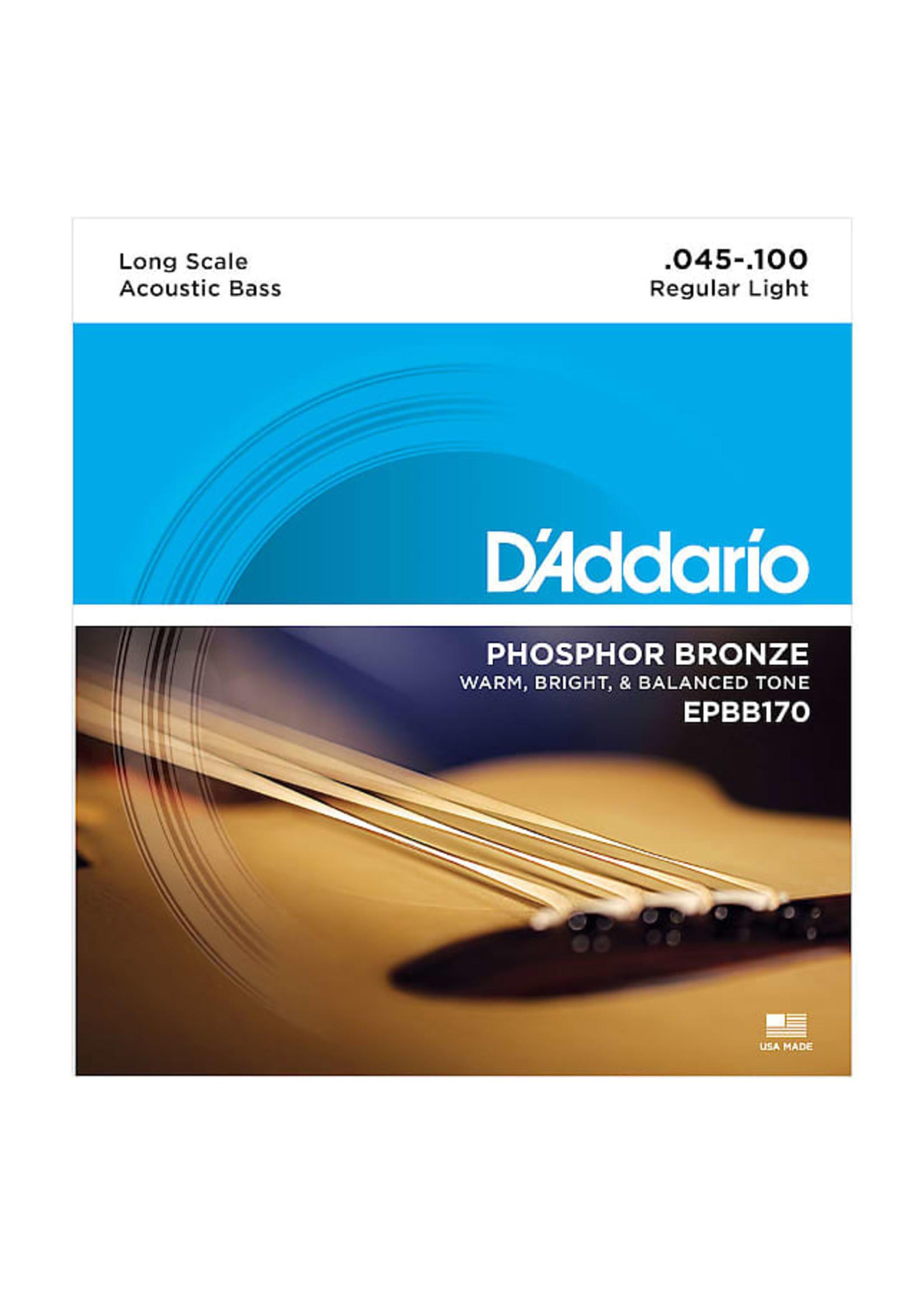 D'Addario D'Addario EPBB170 Phosphor Bronze Acoustic Bass, Long Scale, 45-100