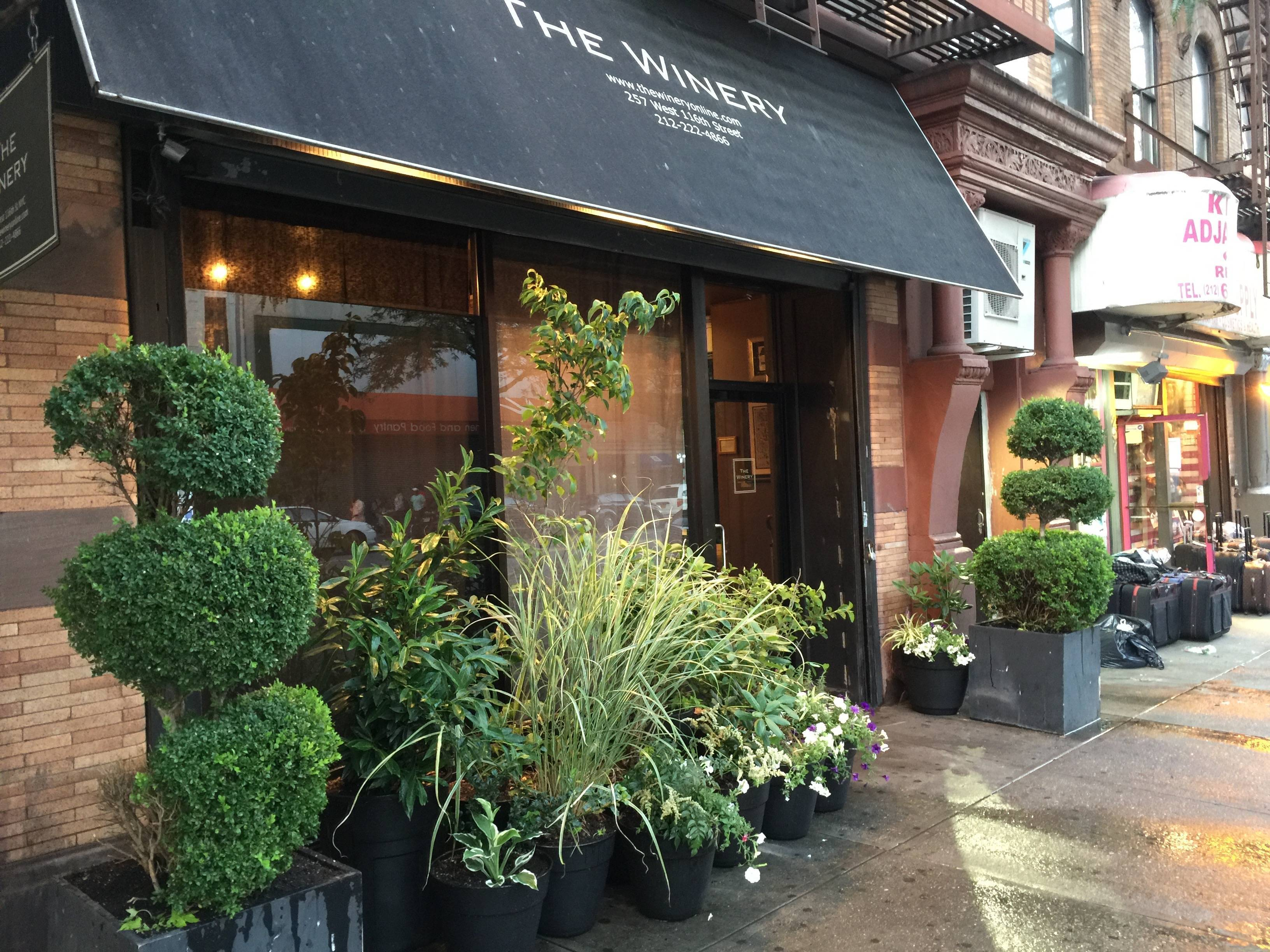 THE WINERY NYC : Artisanal wines for everyone who loves wines; We sell the wines that we love to drink, because life is too short to waste for uninteresting wines.