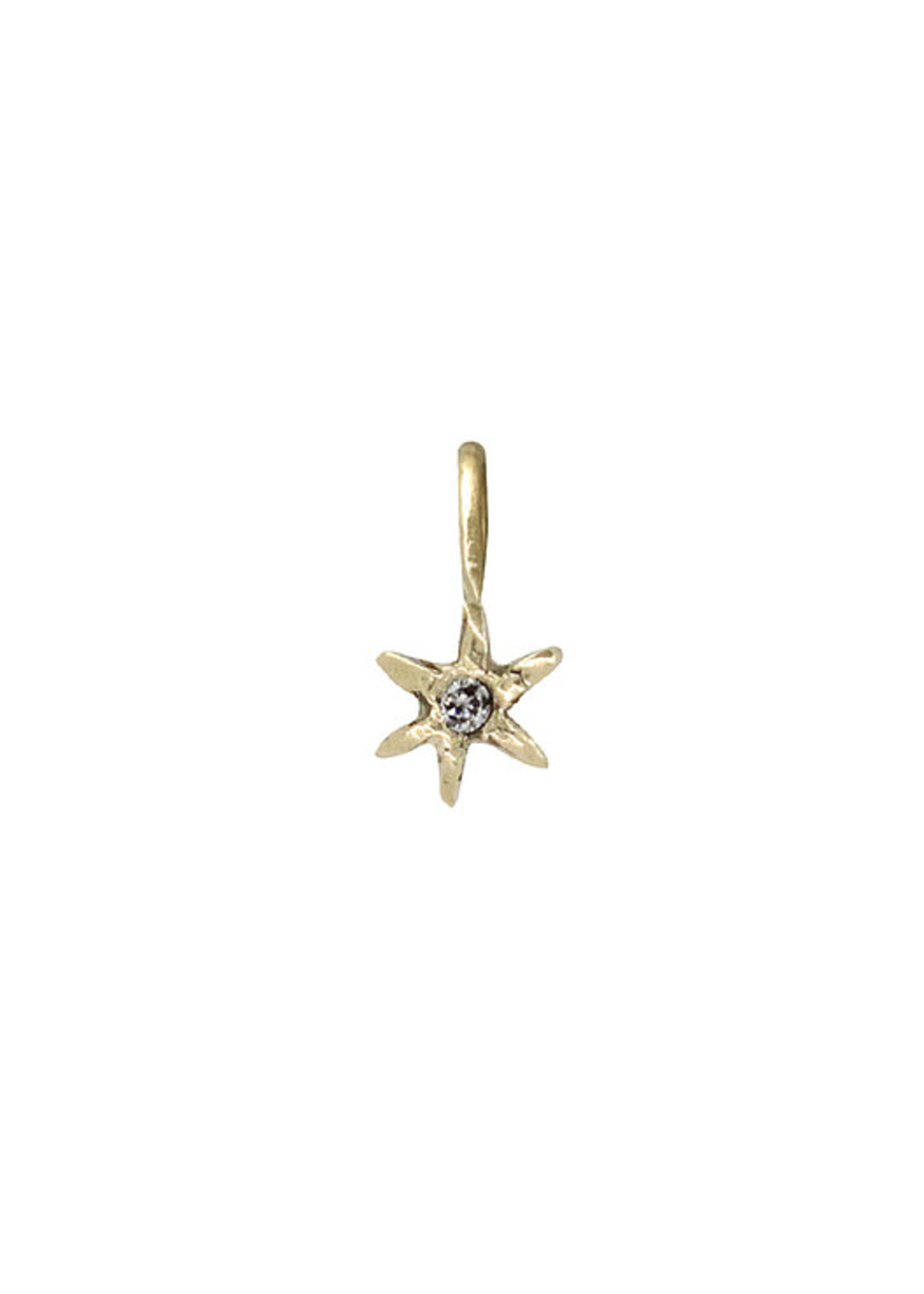 Acanthus Amulet North Star Charm