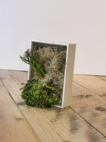 Richard Landry ''green'' frame