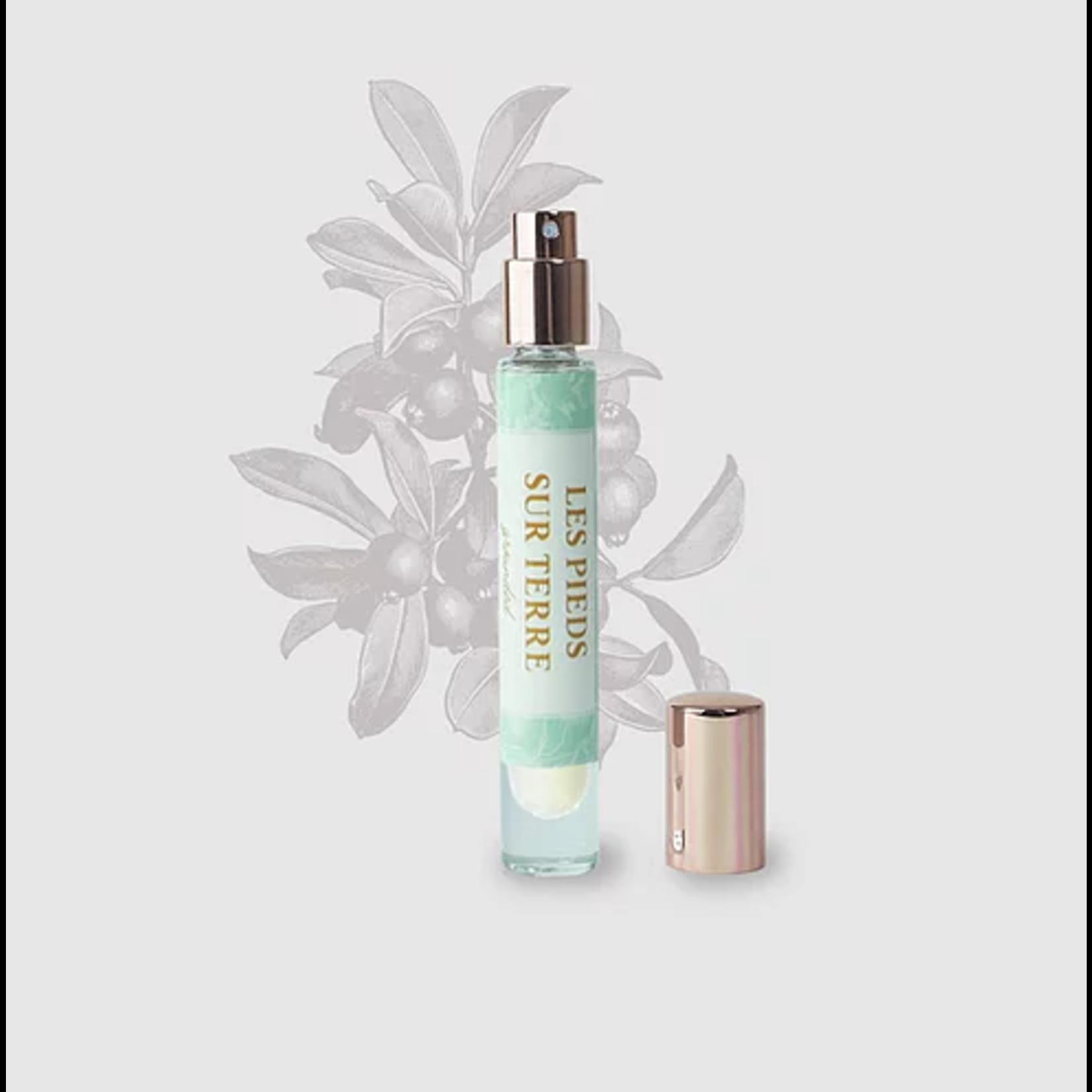 Collection de Massy Grounded - Eau de Parfum