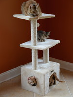 "Armarkat Armarkat 39"" 3-Tier Cat Condo w/Sisal Scratching Post Beige"