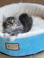 "Armarkat Armarkat 15"" Soft Plush Round Donut Pet Bed"