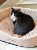 Armarkat Armarkat Round Oval Cuddle Nest Lounger Pet Bed Light Apricot