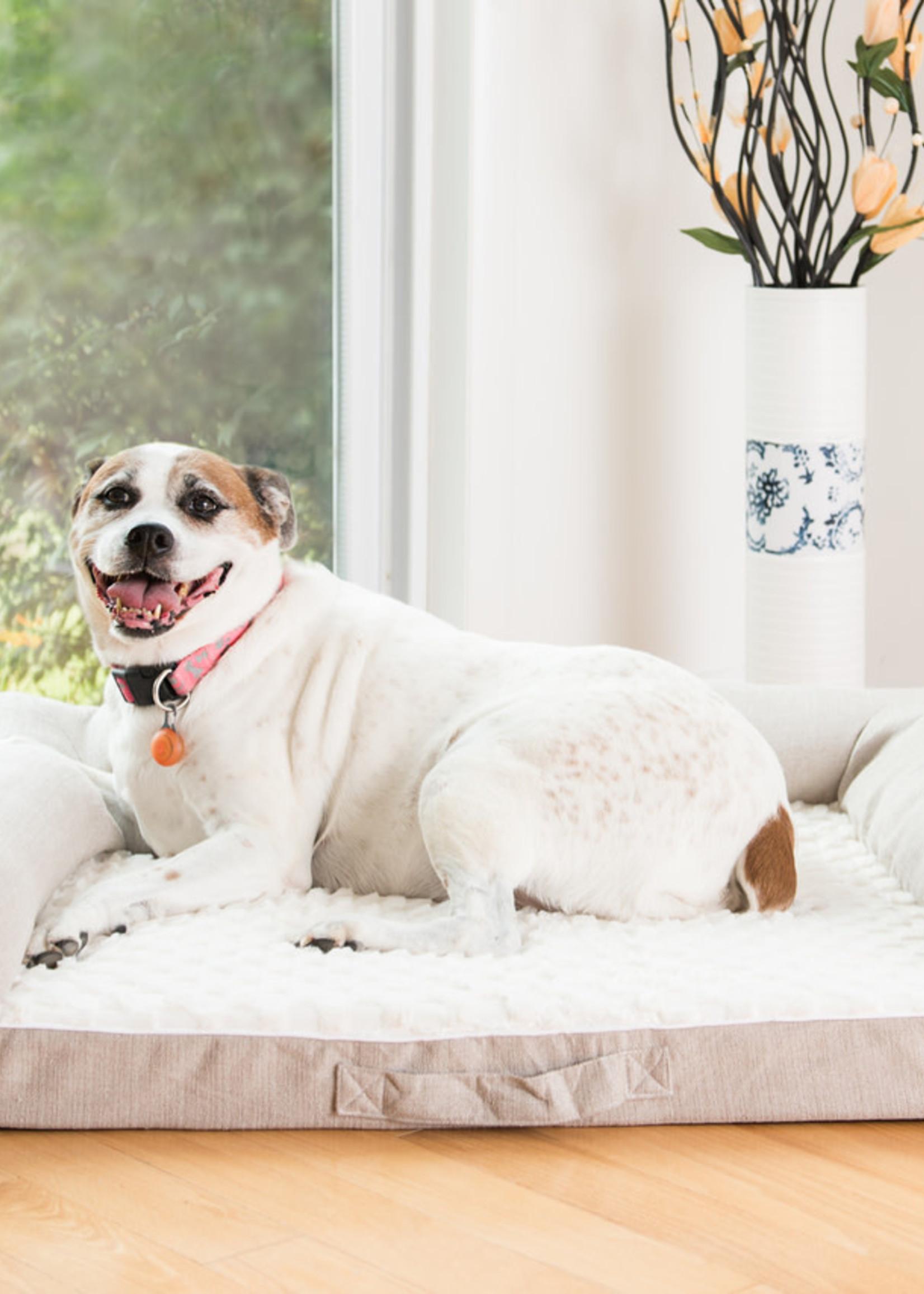 Armarkat Armarkat Med Bolstered Pet Bed Cushion w/Memory Foam Ivory & Beige
