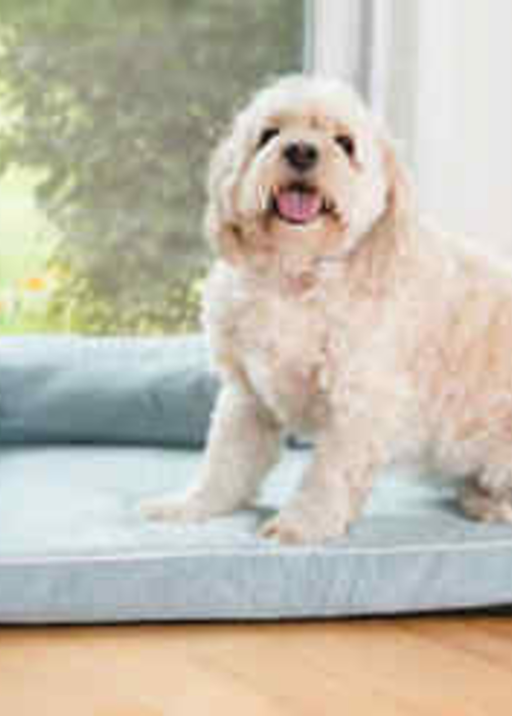 Armarkat Armarkat Med Bolstered Pet Bed Cushion w/Memory Foam Soothing Blue