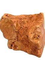 Little Loyals Little Loyals - Heather Tree Root Dog Chew - XS