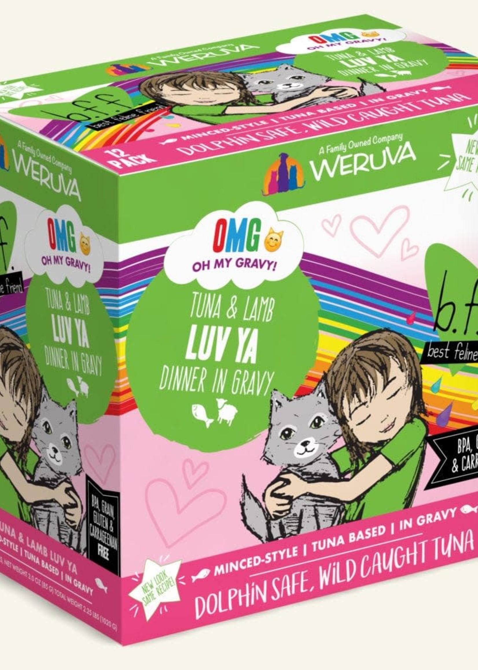 Weruva B.F.F. OMG Luv Ya  Wet Cat Food 3oz Pouch Case