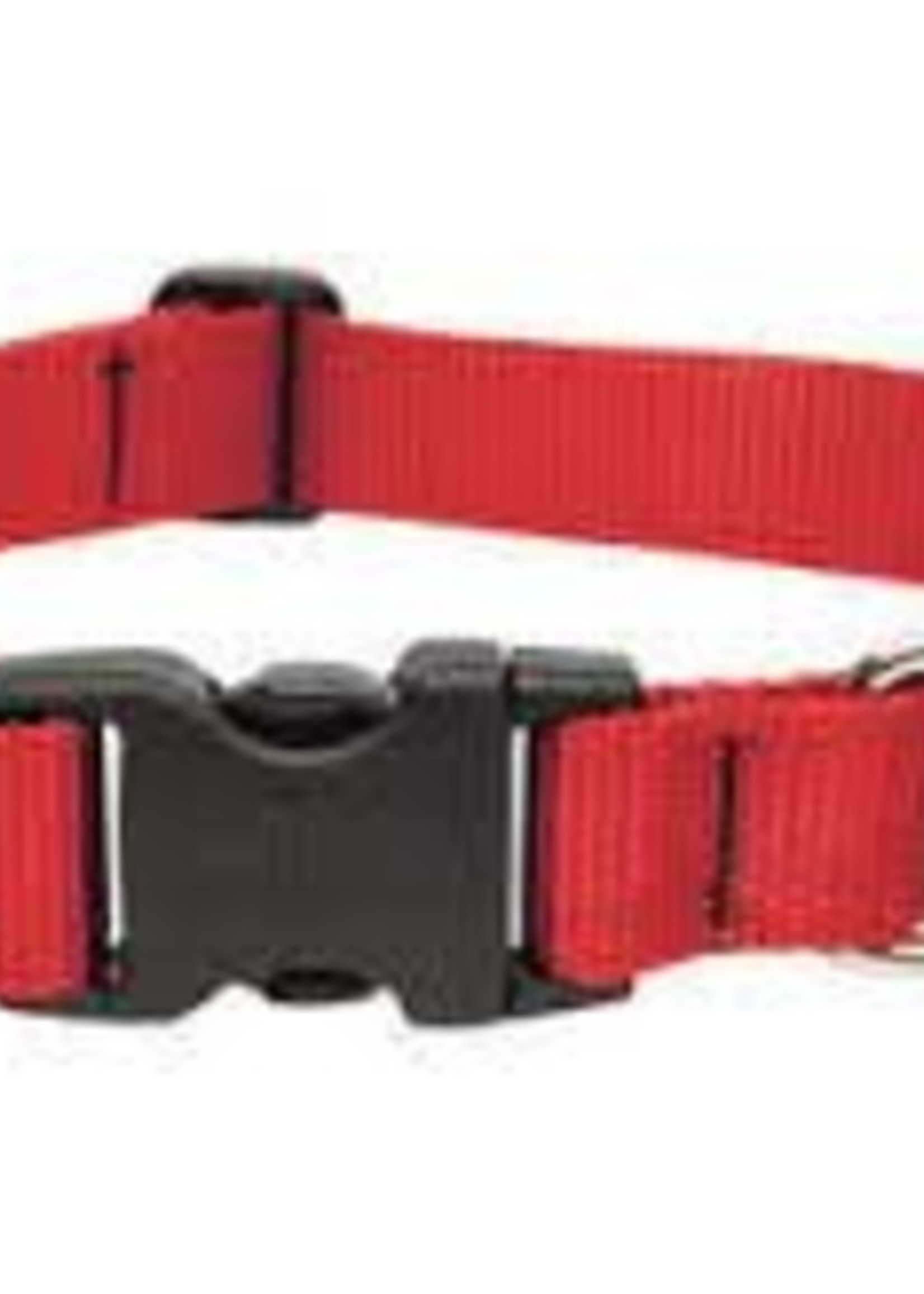 LupinePet Lupine 1in Red 16-28 Adj Collar
