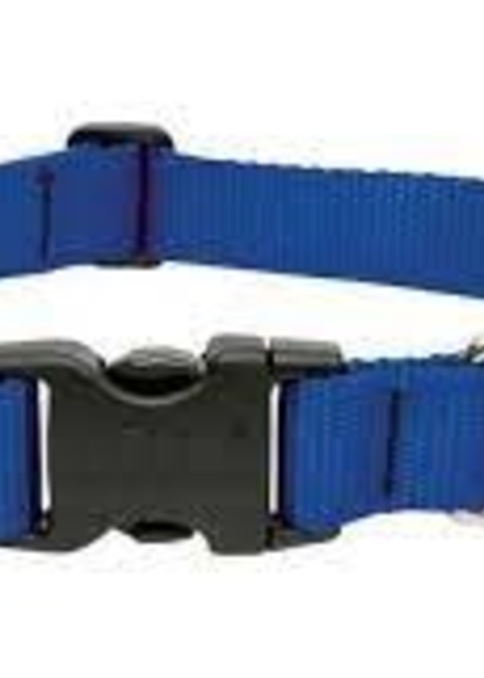 LupinePet Lupine 1in Blue 12-20 Adj Collar