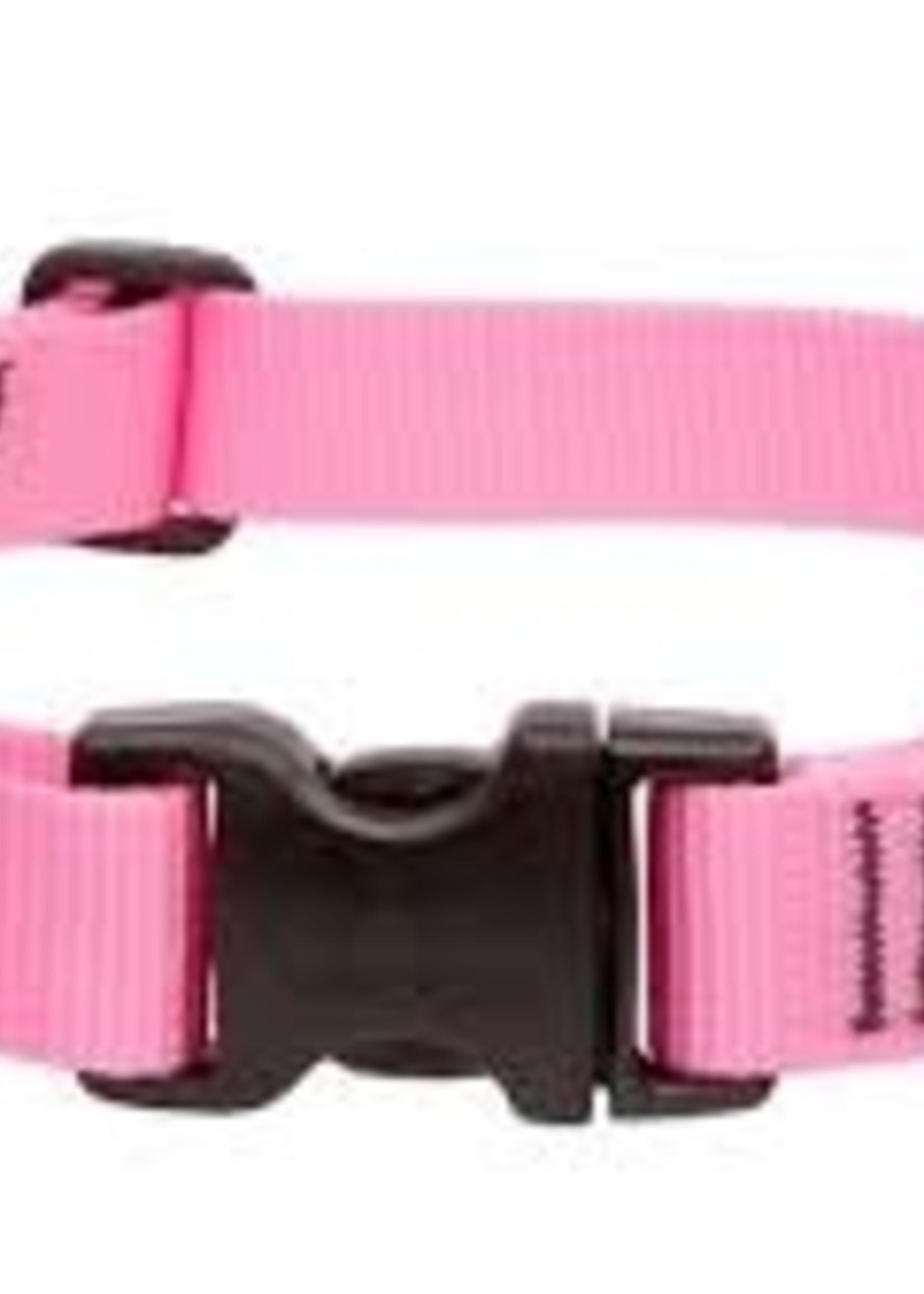 LupinePet Lupine 1in Pink 12-20 Adj Collar