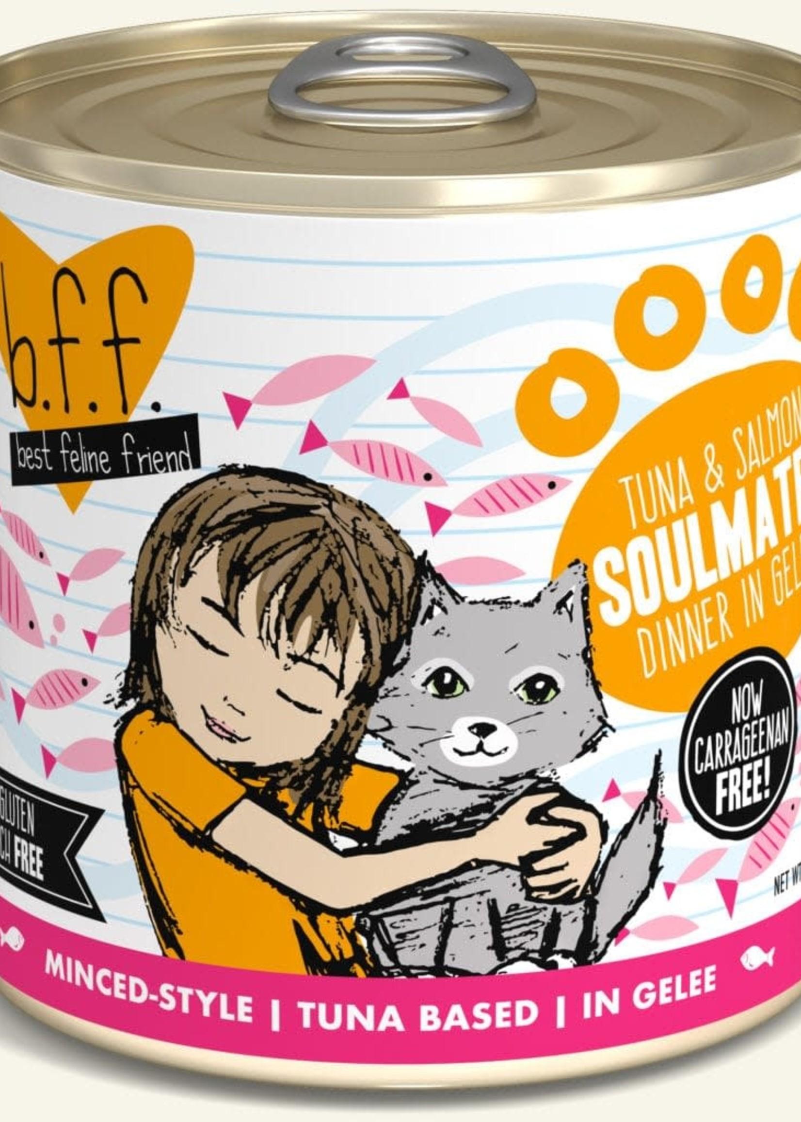 Weruva B.F.F. Tuna & Salmon Soulmates in Gelée 10oz Can Wet Cat Food (Pack of 12)