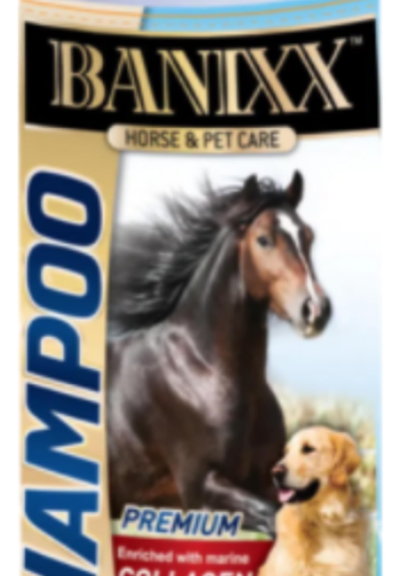 Banixx Banixx Medicated Collagen Shampoo 16 oz