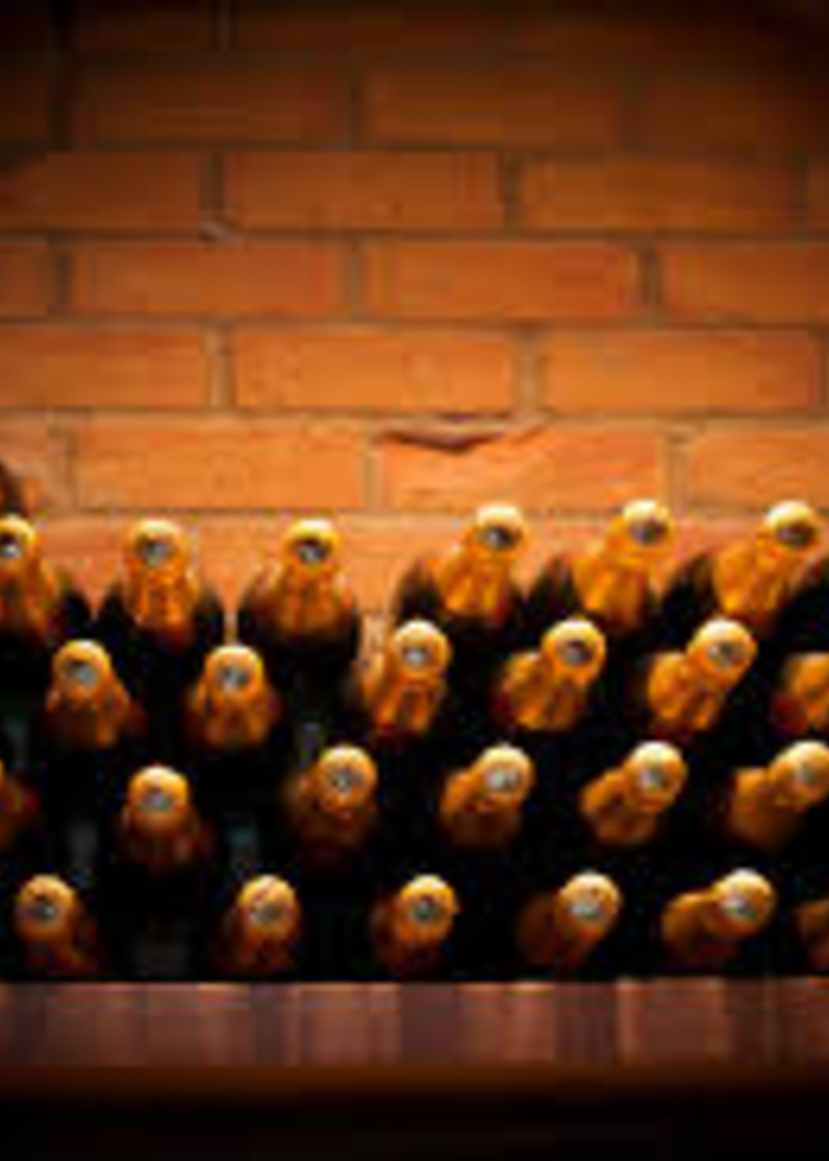 Olive Us Champagne Wine Vinegar