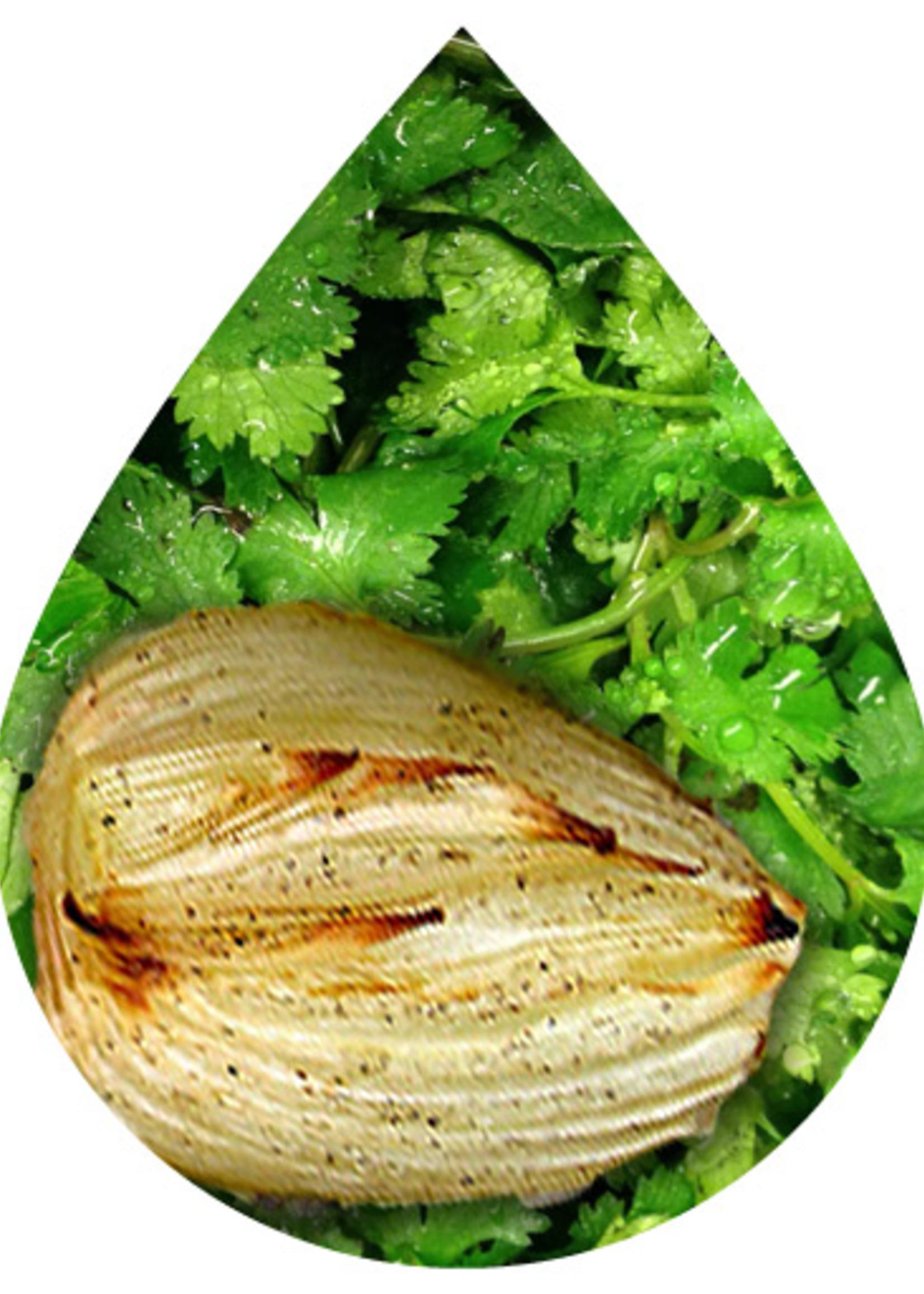 Olive Us Cilantro & Roasted Onion