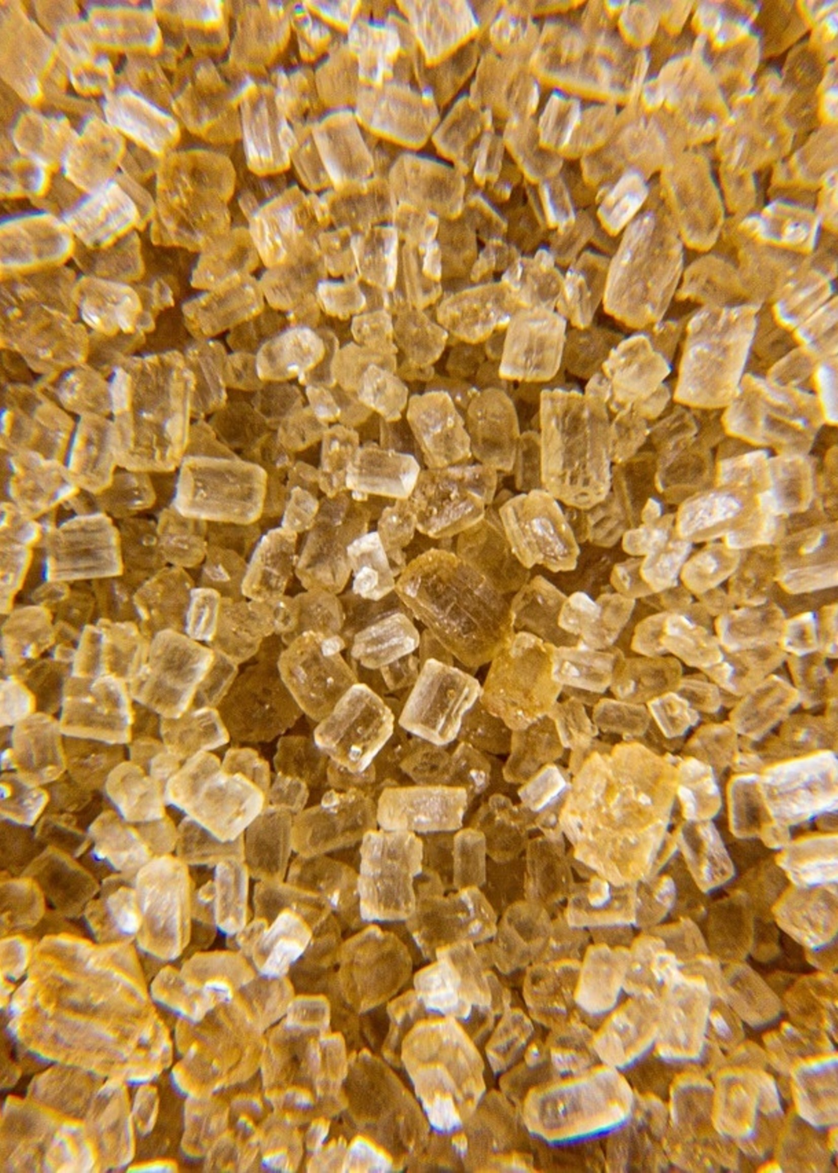 Olive Us Gingerbread-Organic Sugar