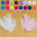 BLACK ALL PURPOSE FEATHERS, 14 GRAMS/BAG