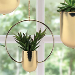 """50% off WAS $29 NOW $14.50  H- 12"""" D- 10"""" Planter: D- 3"""" HANGING GOLD METAL PLANTER"""