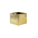 """5""""H X 5.5"""" X 5.5"""" GOLD ETCHED CUBE"""