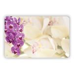 PLAIN ORCHID MIX, capri card NO SENTIMENT 3 1/2″ x 2 1/4″