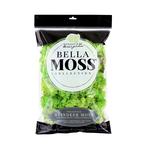 Reindeer Moss 200 cu in bag Chartreuse Moss