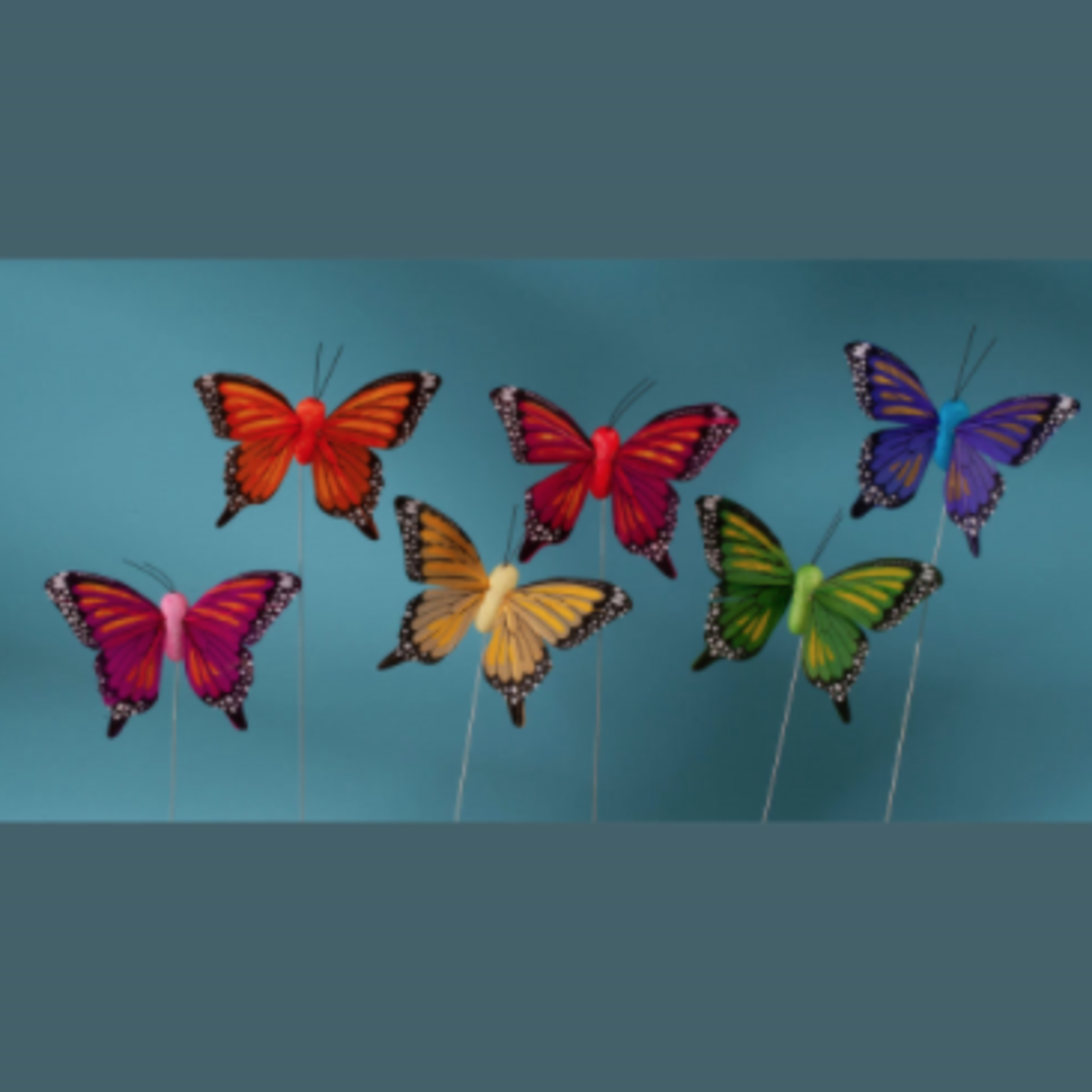 3'' FEATHER BUTTERFLY ASSORTED, 1 DZ IN BOX