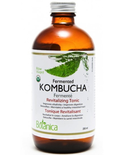 Botanica Botanica Fermented Kombucha 250ml