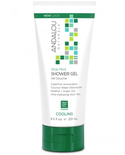 Andalou Naturals Andalou Shower Gel Cooling Aloe Mint 251ml
