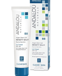 Andalou Naturals Andalou Argan Stem Cell Benefit Balm Untinted SPF 30 58ml