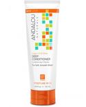 Andalou Naturals Andalou Ultimate Moisture Argan Oil Plus Deep Conditioner 172ml