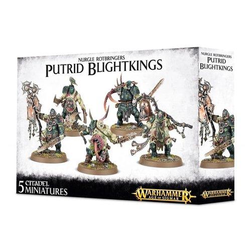 Warhammer 40k Putrid Blightkings