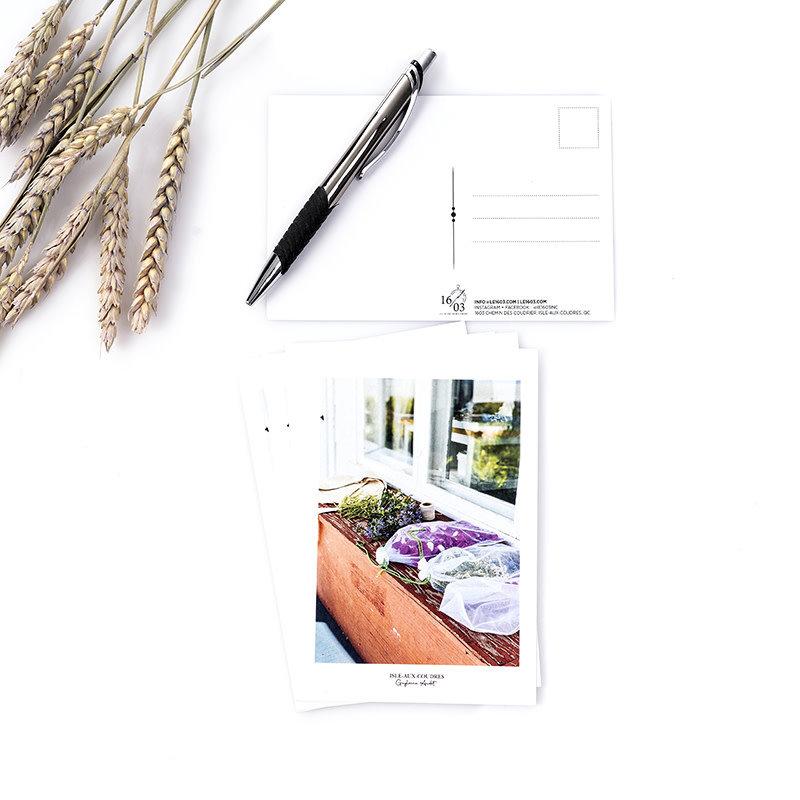 Le 1603 Copy of Carte postale - Fleurs au sechage- vertical