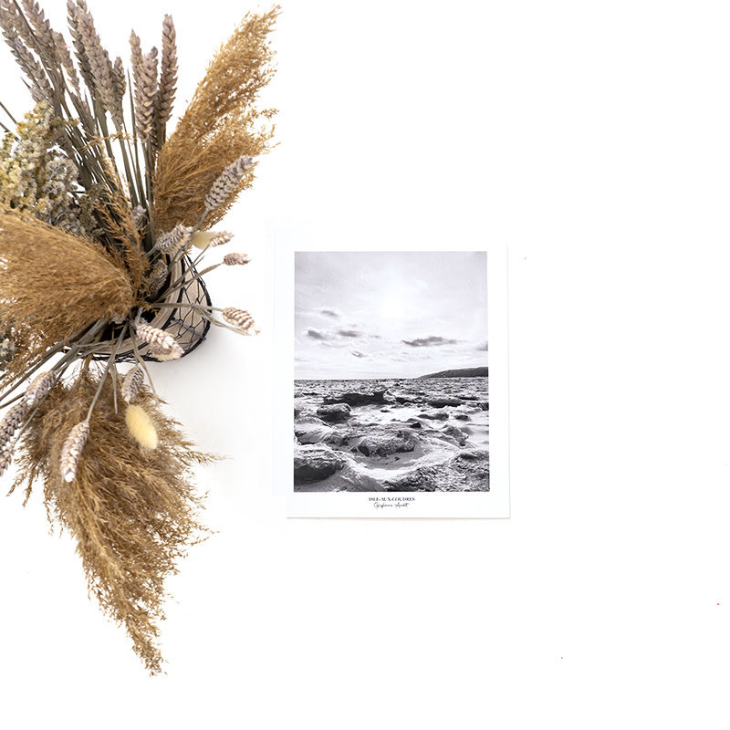 Le 1603 Affiche aquarelle - Fleuve - Hiver B/W - vertical