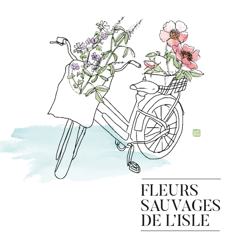 Fleurs Sauvages de L'Isle
