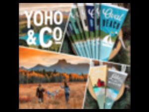 Yoho & Co