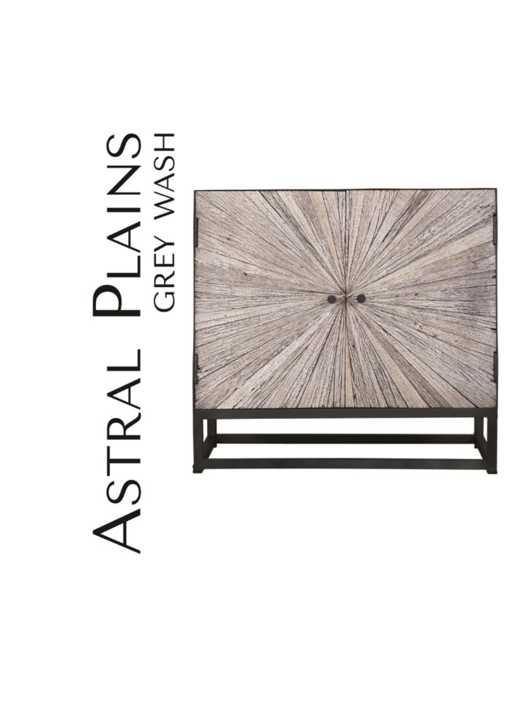 New Astral Plains Reclaimed 2 Door Accent Cabinet JO 1929-32