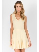 Fanco V-neck Sleeveless Flare Dress - EKD2295