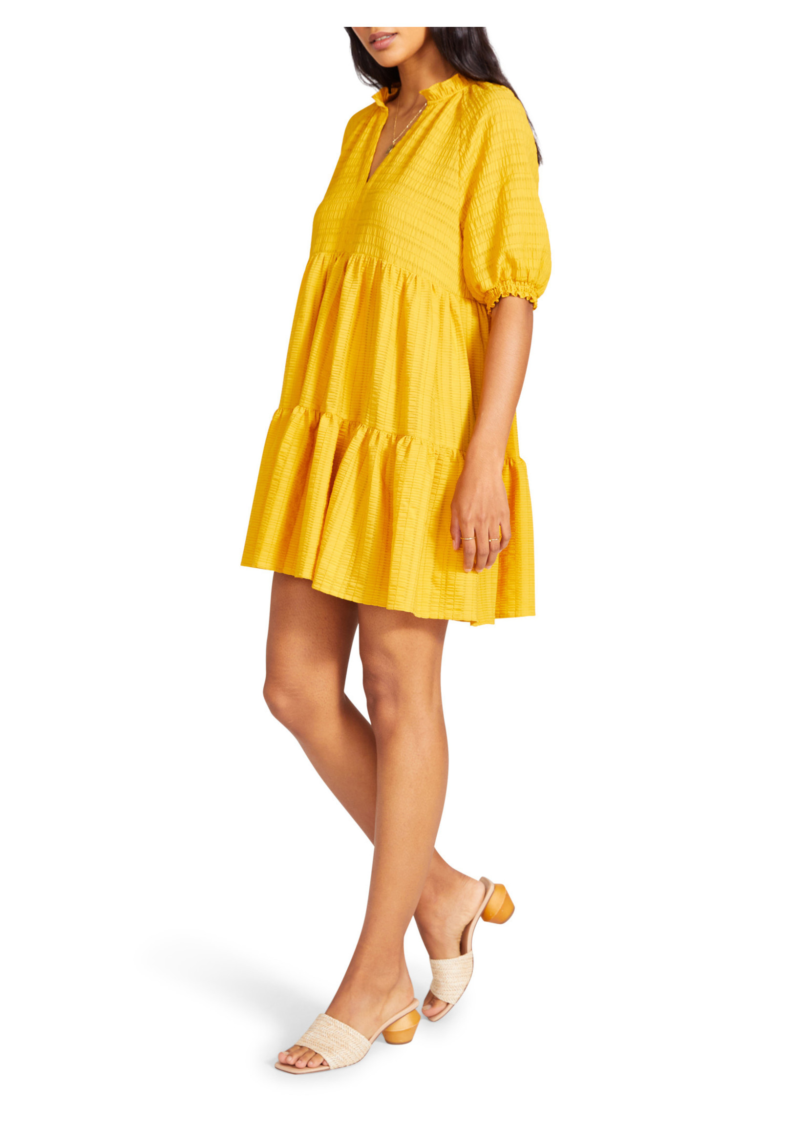 BB Dakota Iced Tea Dress - BL208129