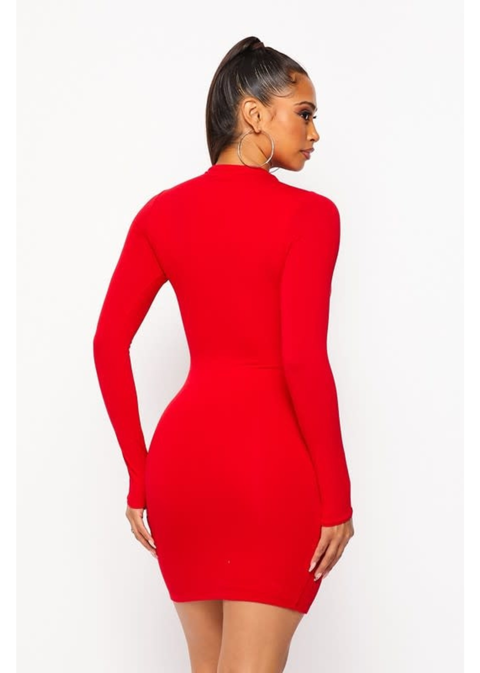 HOT + DELICIOUS All That And More Bodycon Dress - BD20300
