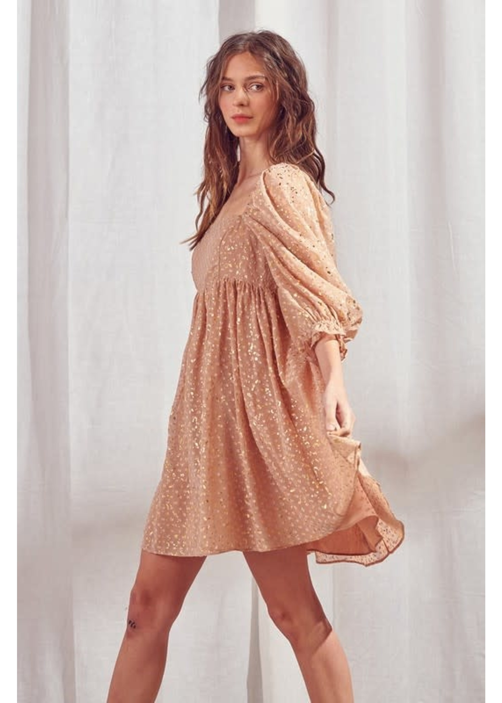 Storia Flaked Embroidered Babydoll Dress - JD2443L