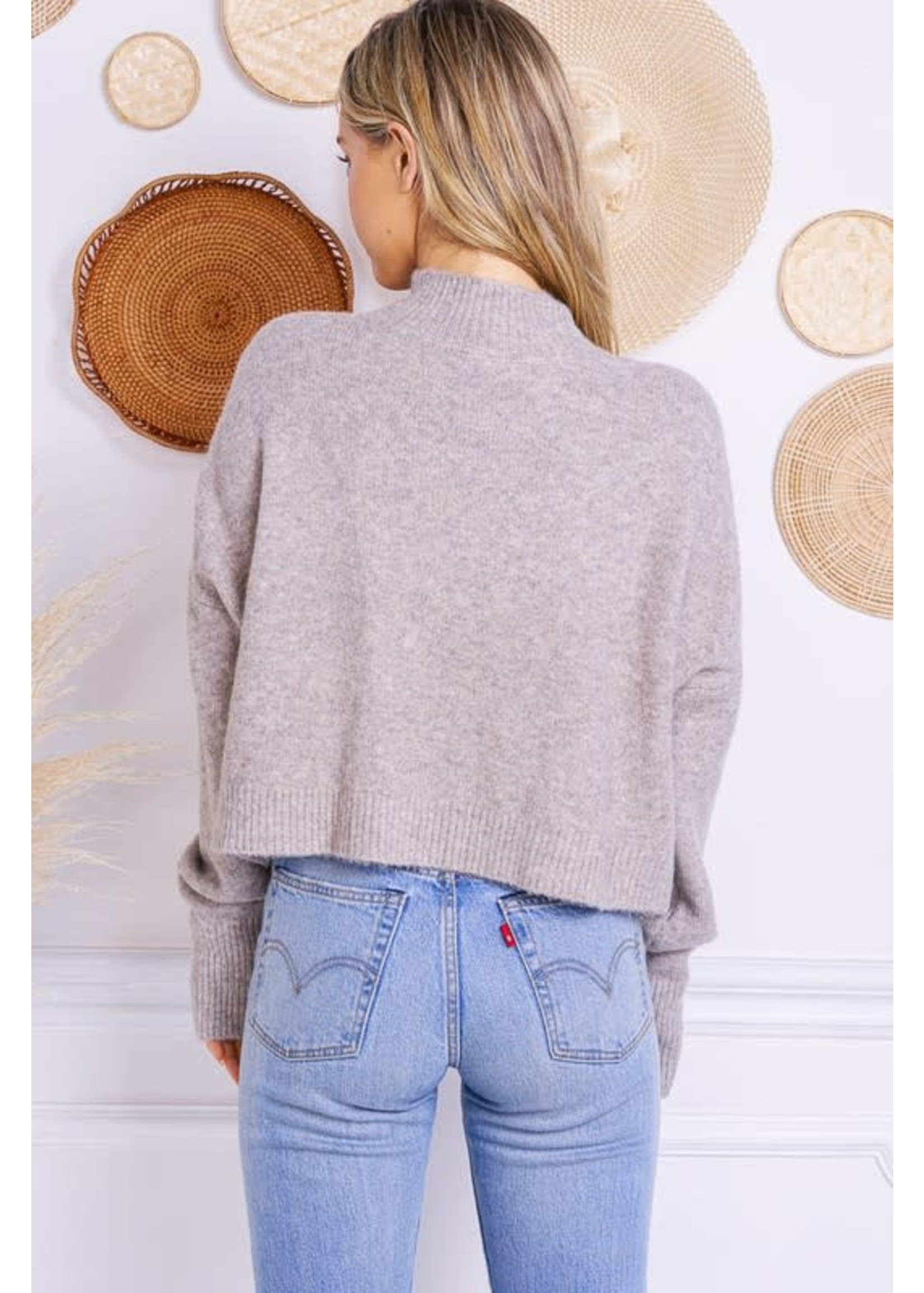 Charlotte Avery Cropped Mock Neck Pullover Sweater - H256