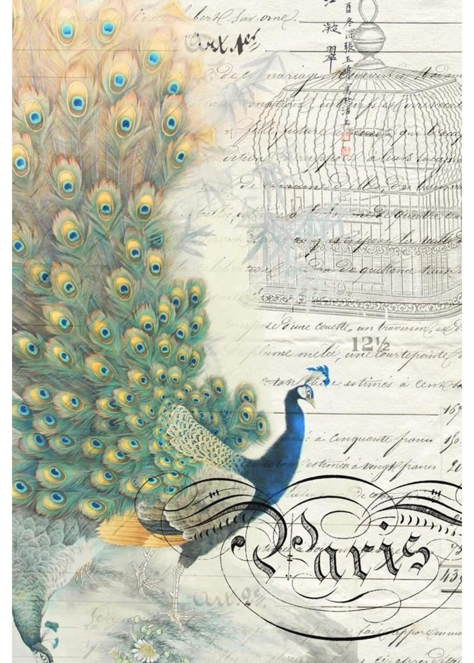 Roycycled Treasures Peacock Ephemera Left Decoupage Paper