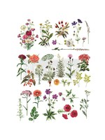 Re-Design with Prima® Floral Collection Transfers